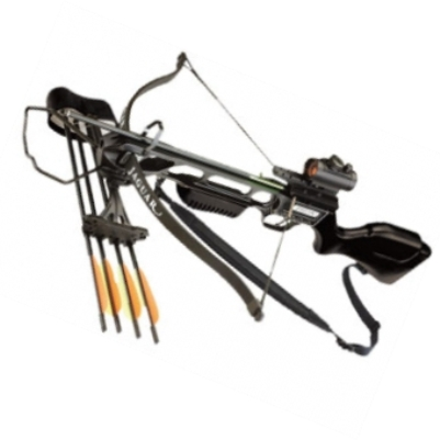 Archery & Crossbows
